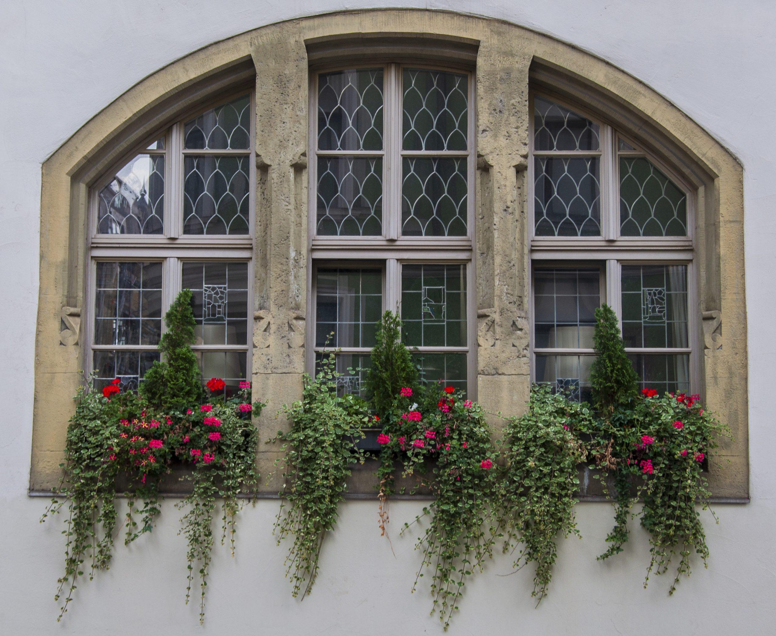 Gothic Shop Regensburg